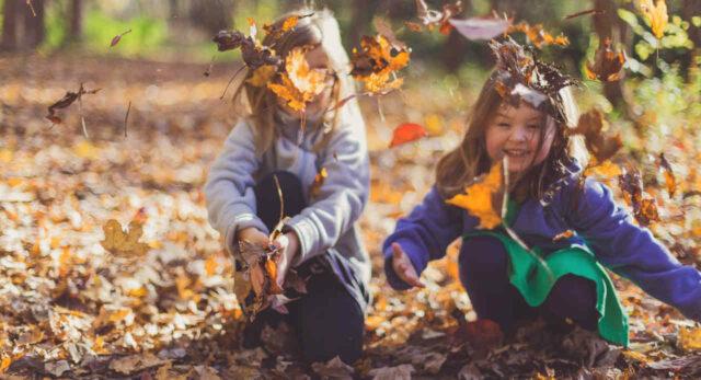Im Herbst mit Kindern eine Laubschlacht veranstalten